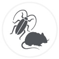 About us_Service Website_icon-Pest Management