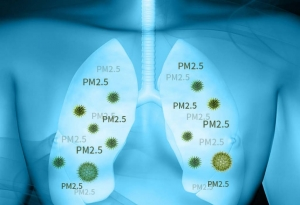 This test aims to determine the level of a list of common IAQ parameters in indoors. For example, PM2.5, carbon dioxide (CO2), carbon monoxide (CO), nitrogen dioxide (NO2), formaldehyde (HCHO) and volatile organic compounds (TVOC) etc.
