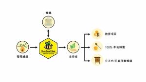 莊臣集團 拯救本地蜂保育計劃 如何運作?