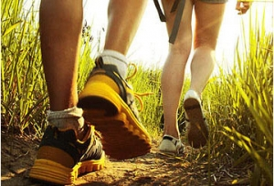 Protect yourself by choosing and applying insect repellents