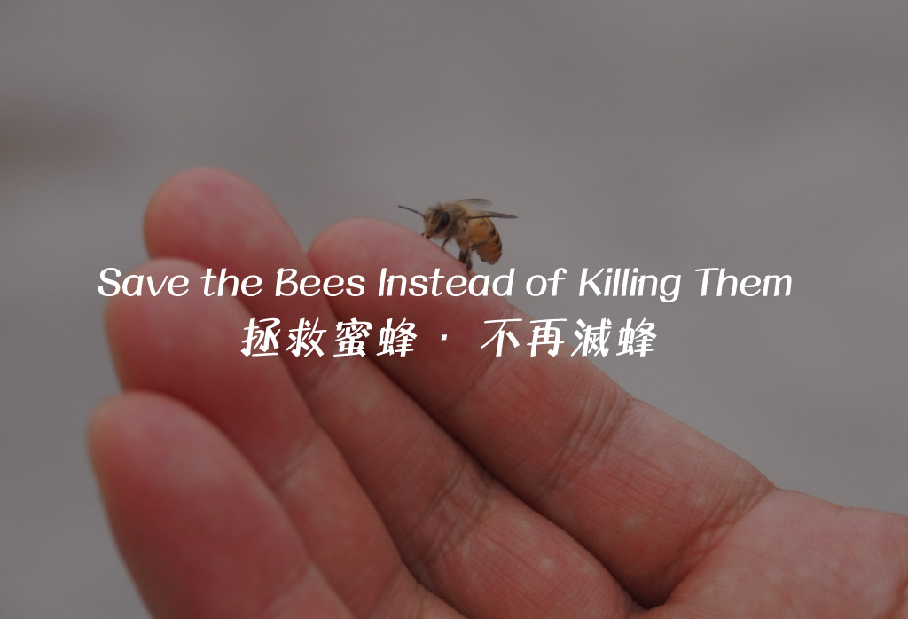 Johnson Group Save Local Bee Conservation: Save the bees instead of killing them