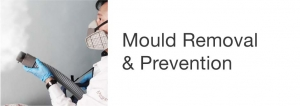 Mould Removal & Prevention Service - Johnson Group