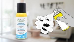 Johnson Group +PestDIY - PestAerosol™ Crawling Pests Aerosol Insecticide