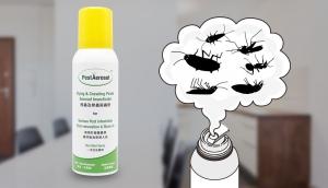 Johnson Group +pestDIY - PestAerosol™ Flying and Crawling Pests Aerosol Insecticide