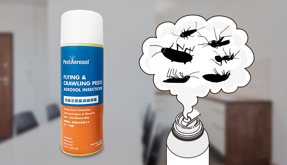 Johnson Group +pestDIY - PestAerosol™ Flying and Crawling Pests Aerosol Insecticide