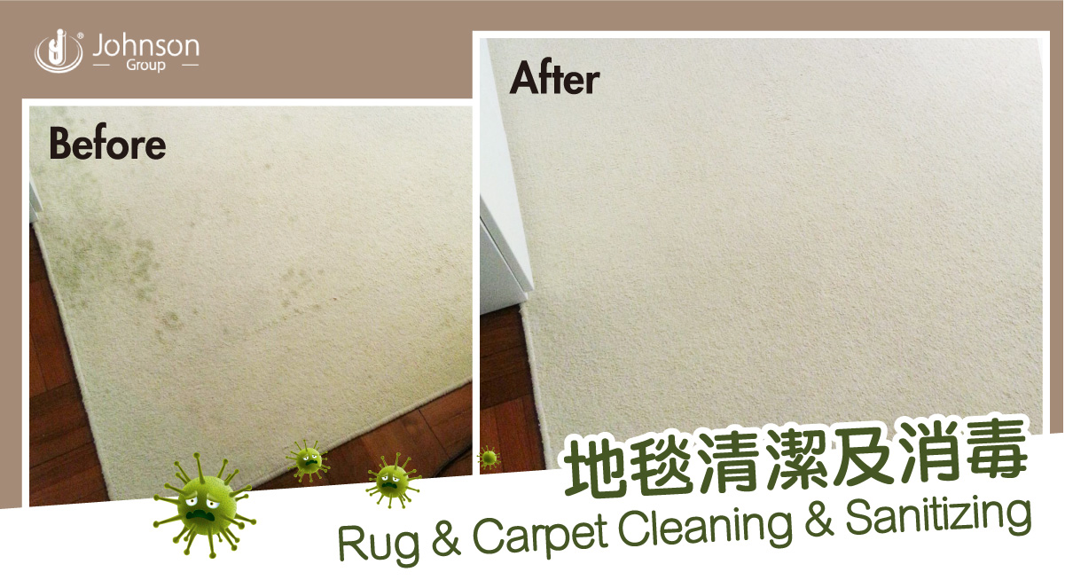Rug and Carpet Cleaning & Sanitizing