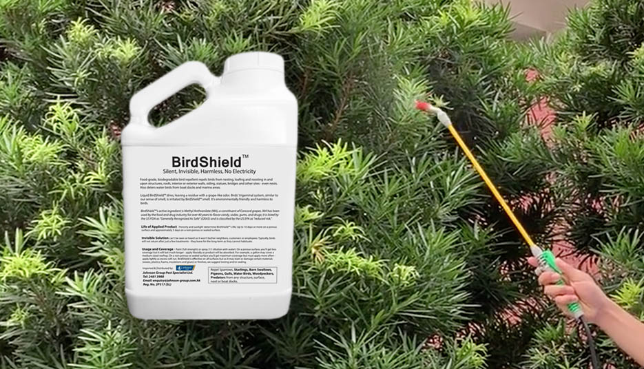 SafePRO® Bird Repellent (BirdShield™)