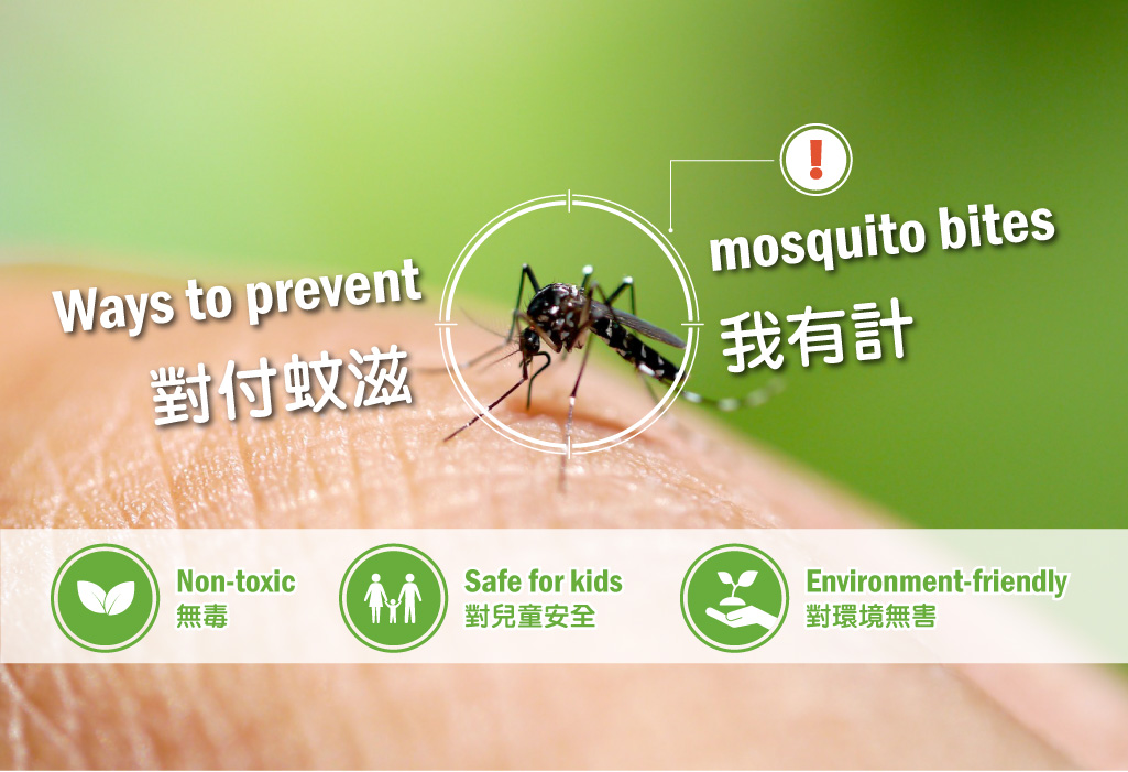 Ways to prevent mosquito bites