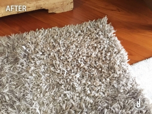 Johnson Group Rug, Carpet Cleaning & Sanitizing Service (Before&After)
