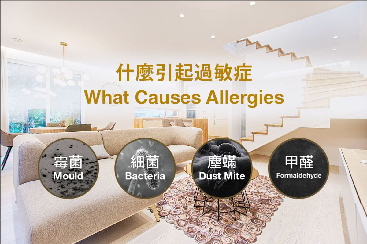 what causes allergies